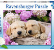 Sweet Dogs in a Basket  300 XXL  Bitar Ravensburger