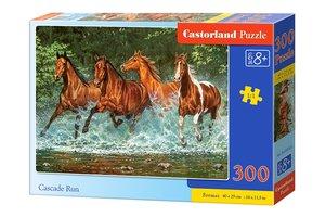 Cascade Run 300 Bitar Castorland