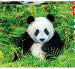 Panda 500 Bitar Educa