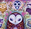 Great Big Owl 1000 Bitar Heye