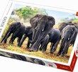 African Elephants 1000 Bitar Trefl