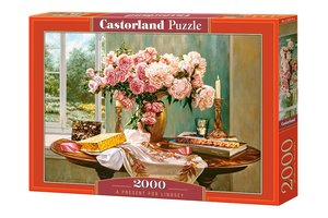 A present for Lindsey 2000 Bitar Castorland