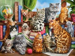 House of Cats 2000 Bitar Castorland